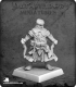 Pathfinder Miniatures: Zadim, Iconic Slayer