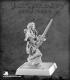 Pathfinder Miniatures: Hestrig Orlov