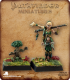 Pathfinder Miniatures: Druid and Familiar