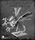 Pathfinder Miniatures: Jabberwock