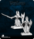 Warlord: Elves - Elven Royal Guardsmen Adept Box Set