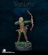 Warlord: Elves - Vale Archer Adept