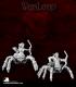 Warlord: Darkspawn - Isiri Arachnid Archers Box Set