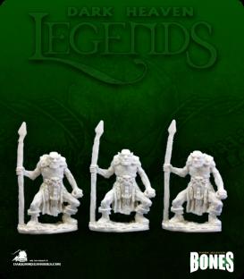 Dark Heaven Legends Bones: Orc Spearmen