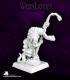 Warlord: Reptus - Ssudai, Nagendra Mage