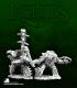 Dark Heaven Legends: Spikeshell Warriors