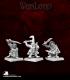 Warlord: Reven - Goblin Rangers Adept Box Set
