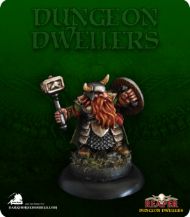 Dungeon Dwellers: Borin Ironbrow, Dwarf Adventurer (painted by Cicciopiu)