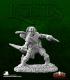Dark Heaven Legends: Dilean Softstep, Half Elf Rogue