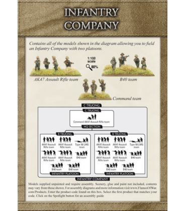 Flames of War (Vietnam): PAVN Infantry Company