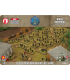 Flames of War (Vietnam): PAVN Giap's Guerrillas (Local Forces Army Deal)