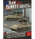 Team Yankee: (Soviet) SA-13 Gopher SAM Platoon