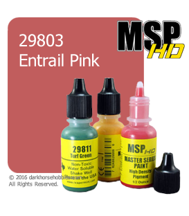 Master Series Paint: HD Colors - 29803 Entrail Pink (1/2 oz)