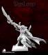Warlord: Darkspawn - Javolith II, Captain