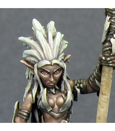 Warlord: Darkreach - Liela Mordollwen, Dark Elf Sorceress (painted by Derek Schubert)