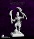 Warlord: Nefsokar - Nakhti, Captain