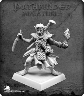 Pathfinder Miniatures: Skreed Gorewillow
