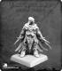 Pathfinder Miniatures: The Red Raven