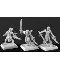 Warlord: Elves - Deathseekers, Elven Adept Box Set
