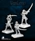 Warlord: Elves - Elven Vale Swordsmen Grunt Box Set