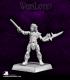 Warlord: Elves - Irith, Deathseeker Hero