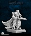 Warlord: Elves - Ellithin Graysteel, Royal Elf Hero