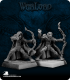 Warlord: Tembrithil/Elves - Elven Rangers Adept Box Set