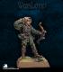 Warlord: Elves - Niriodel, Elven Cleric
