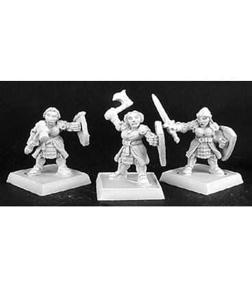 Warlord: Dwarven Shield Maidens Adept Box Set