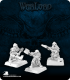 Warlord: Dwarven Swiftaxes Grunt Box Set
