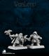 Warlord: Dwarven Pathfinders Adept Box Set