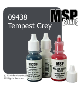 Master Series Paint: Bones Colors - 09438 Tempest Grey (1/2 oz)
