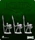 Dark Heaven Legends Bones: Skeletal Spearmen