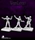 Warlord: Nefsokar - Awakened Army Pack
