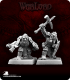 Warlord: Mercenaries - Dark Dwarf Warriors Adept Box Set