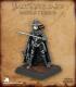 Pathfinder Miniatures: Vampire Hunter
