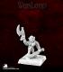 Warlord: Reven - Skralla the Black, Hero
