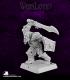Warlord: Reven - Kak'urg, Orc Captain