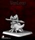 Warlord: Bloodstone Gnomes - Bata, Beetle Rider Captain
