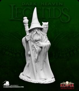 Dark Heaven Legends: Anuminar Winterbeard, Wizard