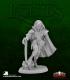 Dark Heaven Legends: Dreadmere Iconic - Blood Wolves Swashbuckler