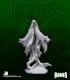 Dark Heaven Legends Bones: Death Shroud