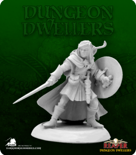 Dungeon Dwellers: Elf Warrior