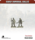 10mm Early Imperial: (Gallic) Heavy Infantry
