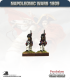 10mm Napoleonic Wars (1809): French Line Grenadiers in Bearskin - March Attack