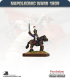 10mm Napoleonic Wars (1809): French Mounted Line Officers in Shako