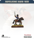 10mm Napoleonic Wars (1809): French Mtd Line Officers in Greatcoat and Shako