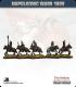 10mm Napoleonic Wars (1809): French Dragoons