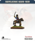 10mm Napoleonic Wars (1809): French Ney (mounted)