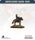 10mm Napoleonic Wars (1809): French Davout (mounted)